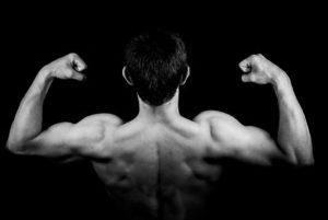 L'Homme, Musculaire, Retour, Hommes, Guy, Ajustement